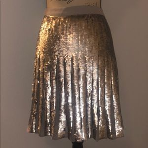 Sparkle and Shine pleated Sequin Skirt